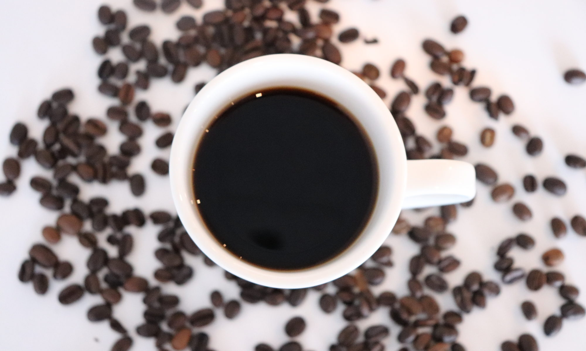 LIFESTYLES COFFEEHOUSE + BISTRO
